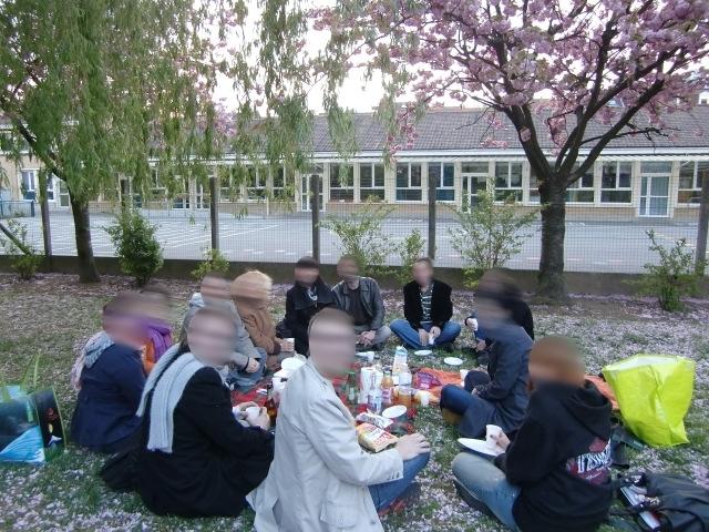 Hanami à l'école japonaise du Nord Pas-de-Calais