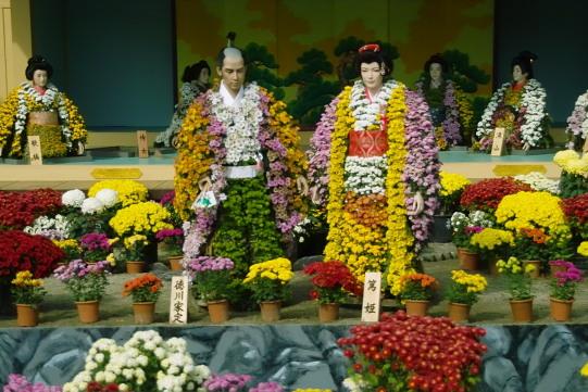 La fête du chrysanthème sur Google Images